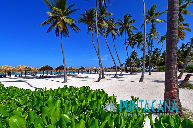 Bavaro Beach - Los Corales - Punta Cana, Dominican Republic