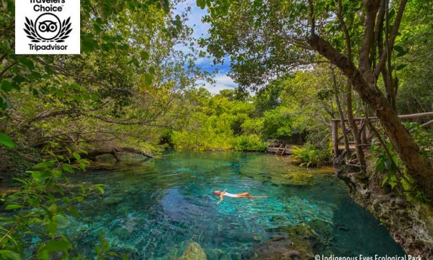"Ojos Indígenas ""Indigenous Eyes"" Ecological Park & Reserve <BR>Punta Cana, Dominican Republic"