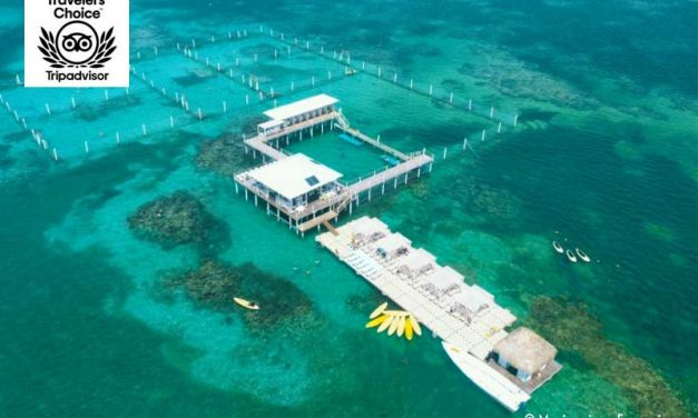 Marinarium Excursions<BR>Top Rated Tours in Punta Cana, Dominican Republic