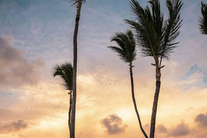 Sunset - Melia Punta Cana Beach Resort - Punta Cana, Dominican Republic