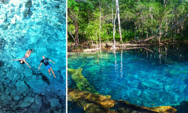 The Mesmerizing Cenotes of Punta Cana, Dominican Republic <BR><h3>Best Cenotes & Popular Tours</h3>