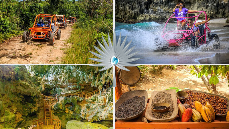 Buggy Tours - Best Things to Do in Punta Cana, Dominican Republic
