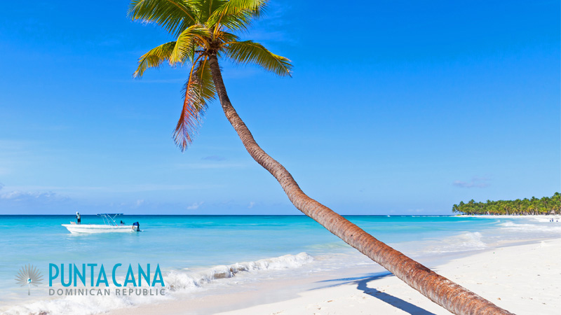 Saona Island - Best Day Trips / Tours from Punta Cana