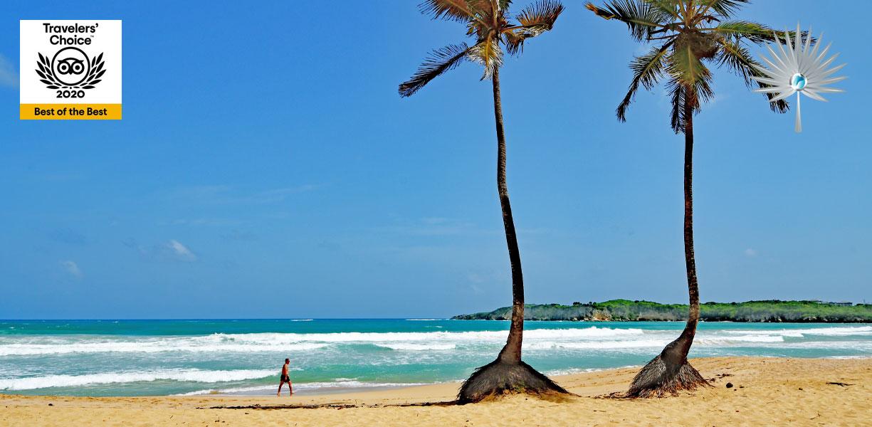 Macao Beach / Playa Macao - Punta Cana Beaches - Dominican Republic