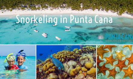 Snorkeling In Punta Cana, Dominican Republic <BR><h3>Best Snorkeling Beaches & Top Rated Tours</h3>