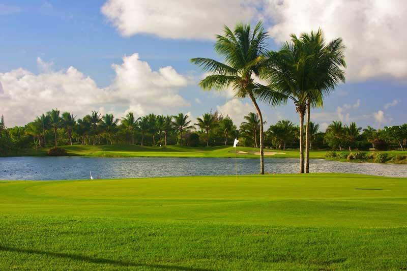 Golf - Melia Caribe Beach - Punta Cana, Dominican Republic