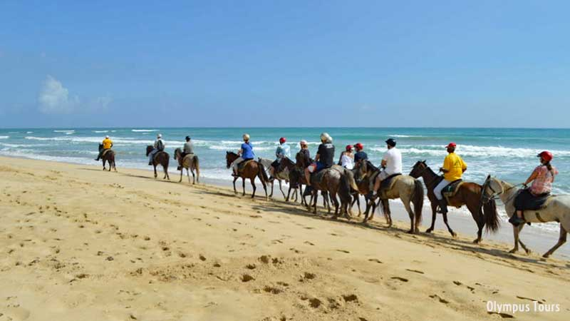 Horseback Riding Tours in Punta Cana - Uvero Alto Beach