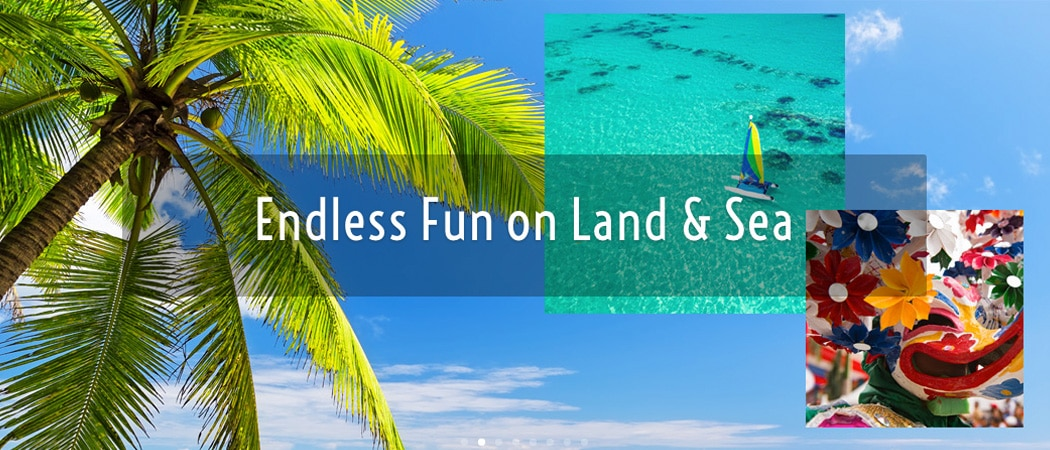 Punta Cana...Endless Fun on Land & Sea - Things to Do Guide